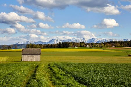 wooden hut: Wooden Hut standing on the meadows in front of mountains Stock Photo