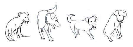 Dogs, drawing photo