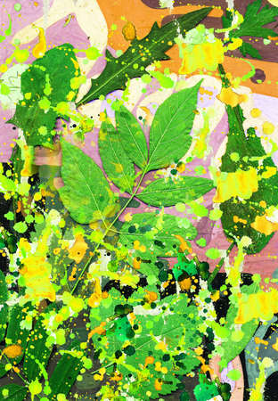 singular: Composition from leaves.Summer mood