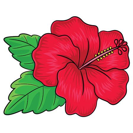 stamen: Illustration of cute cartoon hibiscus flower.