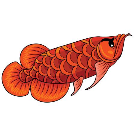 Illustration of cute cartoon arowana fish. Illustration