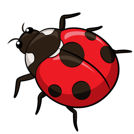 ladybird: Illustration of cute cartoon ladybird.