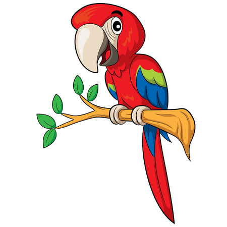 cartoon parrot: Illustration of cute cartoon parrot.