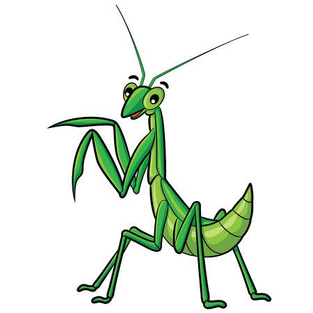 grig: Illustration of cute cartoon praying mantis. Illustration