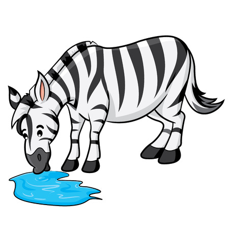 Illustration of cute cartoon zebra drinking of water