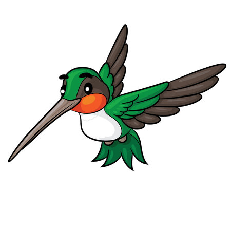 Illustration of cute cartoon hummingbird.