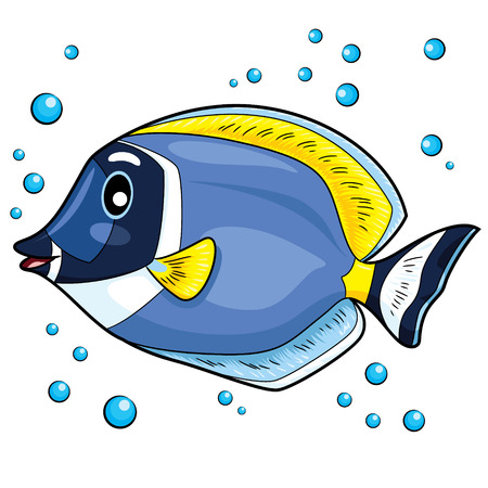 Illustration of blue tang fish.