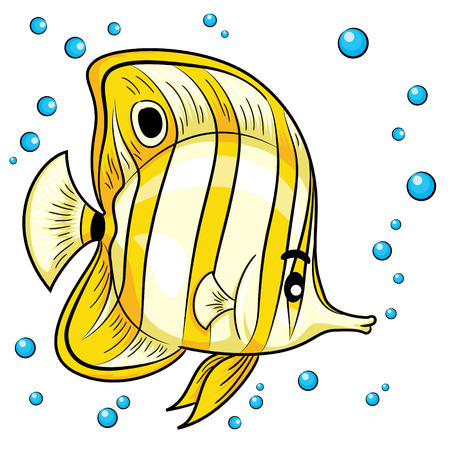 butterfly fish: Illustration of butterfly fish. Illustration