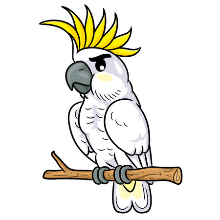 Illustration of cute cartoon cockatoo.