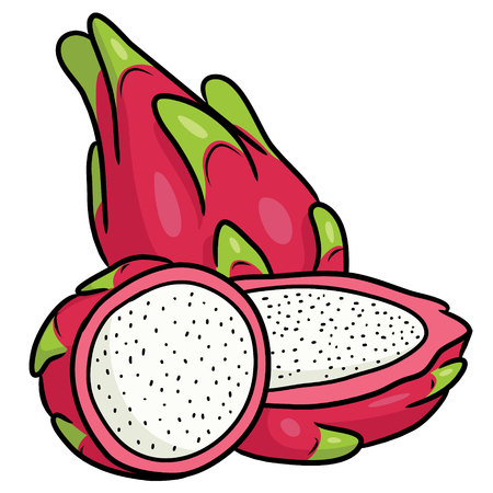 Illustration of cute cartoon dragon fruit.