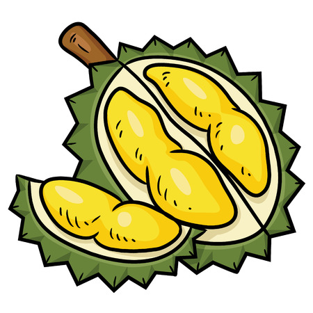 Illustration of cute cartoon durian. Çizim