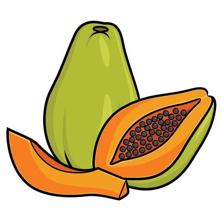 Illustration of cute cartoon papaya. Ilustração