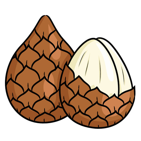 Illustration of cute cartoon snake fruit.
