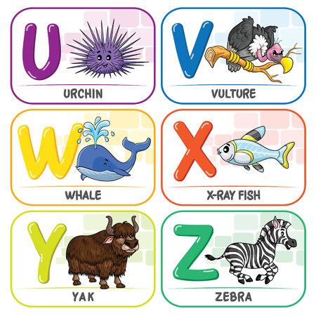 Animal Alphabet U V W X Y Z Zdjęcie Seryjne - 111756546