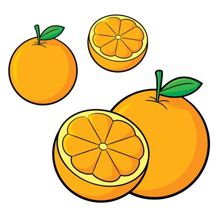 Illustration of cute cartoon orange