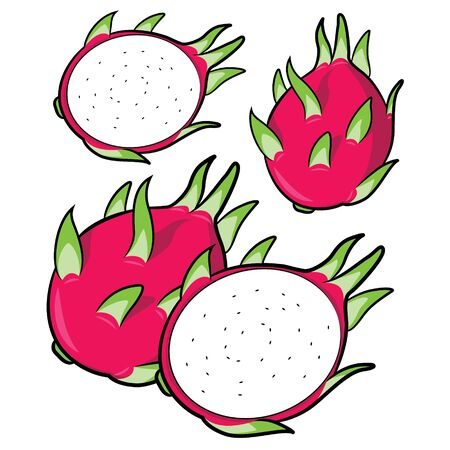 Illustration of cute cartoon dragon fruit Banque d'images - 128050029