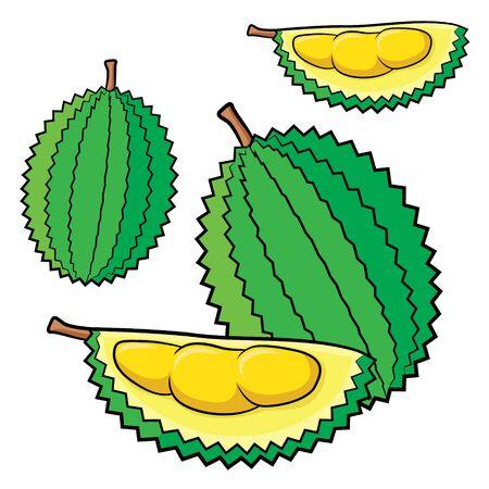 Illustration of cute cartoon durian