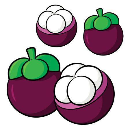 Illustration of cute cartoon mangosteen