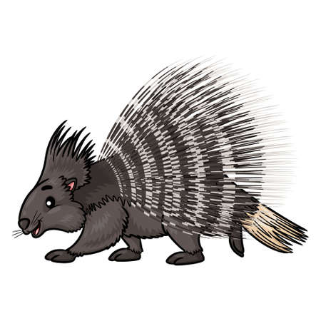Illustration of cute cartoon porcupine.