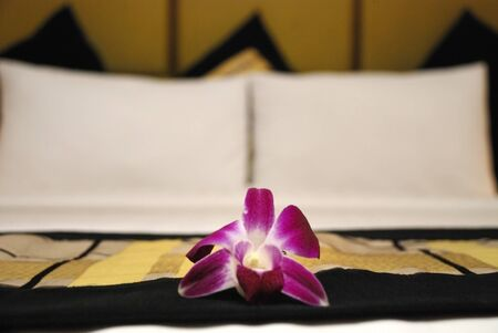 Flower on a hotel bed