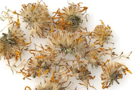Arnica: Arnica montana dried plant