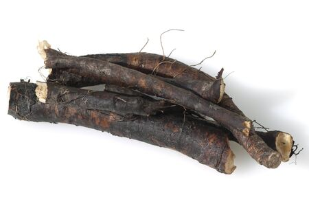 Comfrey Common medicinal roots