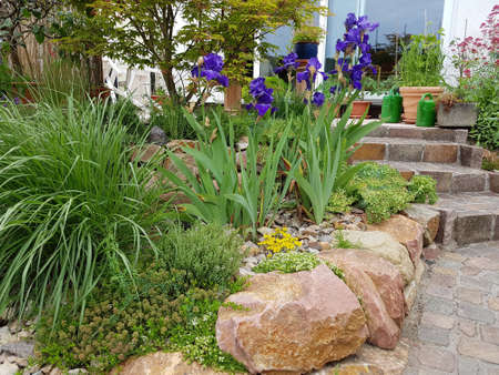 Rock garden is a type of garden design with many stones and boulders in connection with dry stone walls and paved paths. Stock Photo