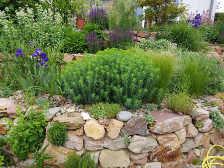 Rock garden is a type of garden design with many stones and boulders in connection with dry stone walls and paved paths.