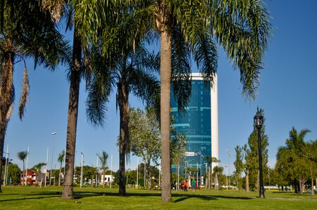 BUENOS AIRES, ARGENTINA - APRIL 14: A modern building is seen over palm trees at the center of Tigre city on April 14, 2017 in Tigre, Buenos Aires, Argentina.