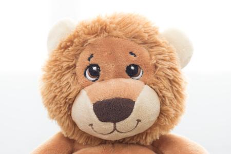 Stuffed lion on white background