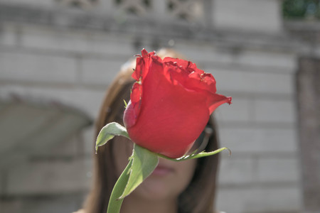 selected: woman behind a red rose