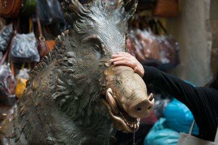florentine: People put a coin in the mouth of bronze boar fountain at Il Mercato Nuovo or the New Market, Florence, Italy