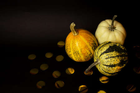 Three pumpkins and decor from paper gold confetti isolated on a black background. It's Halloween time. Halloween mood. Minimal creative stillife