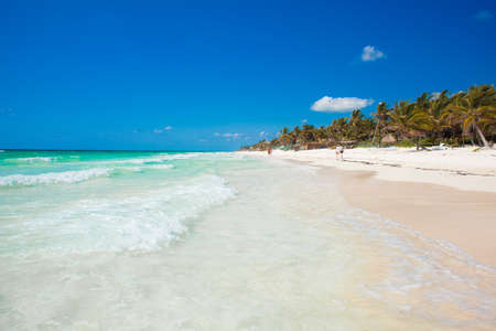 untouched: Untouched tropical beach in Tulum Mexico Stock Photo