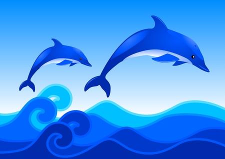 Dolphins Illustration