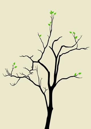 minimalist: Hope