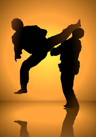 kung fu: Silhuette of men having a martial art match