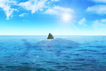 lurid: Stock illustration of a shark in the ocean