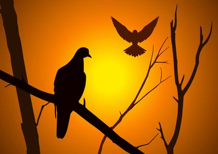 scenery set: Silhouette illustration of birds