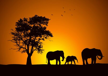 Silhouette of a group of elphants Stock Vector - 8537830