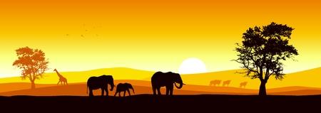 Bestand an African wildlife