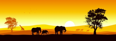 Stock of African wildlife Vector