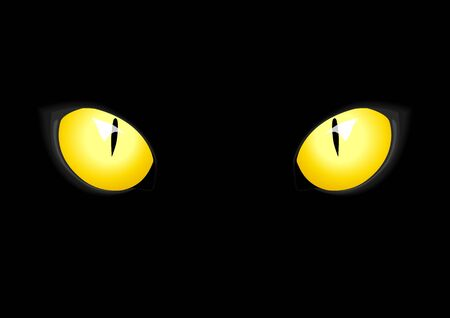 devilish: Vector illustration of cat eyes