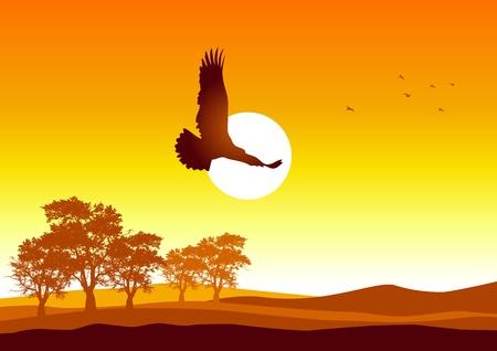 Silhouet afbeelding van een adelaar vliegen bij zonsopkomst Stock Illustratie