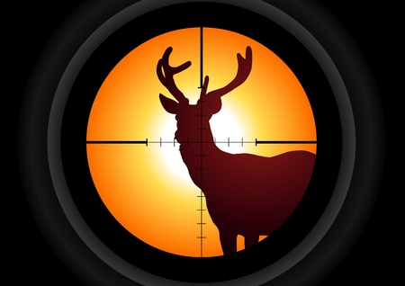 gun sight: illustration of a rifle lens aiming a deer