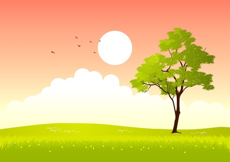 steppe: illustration of a tree in summertime