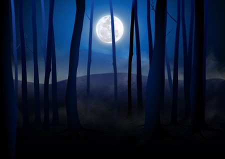 spooky forest: Dark Woods and Full Moon  Stock Photo