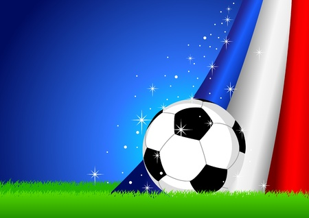 contestant: Vector illustration of a soccer ball with France insignia  Illustration