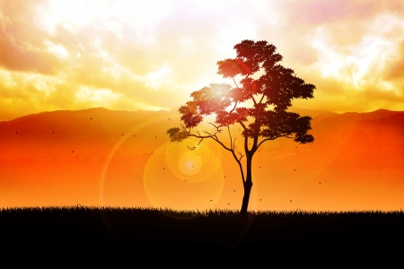 photomanipulation: Illustration of a tree in autumn time