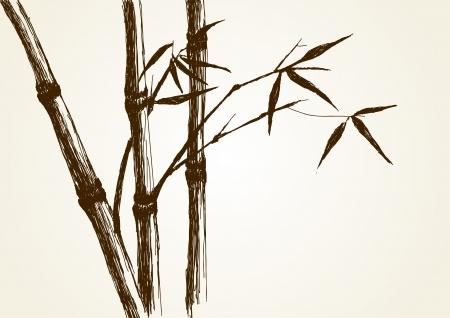 Sketch illustration of bamboo tree  Vector